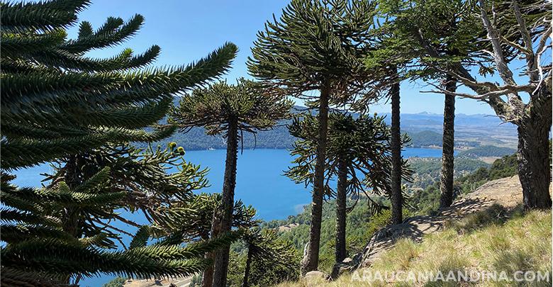 Photo of Lago Icalma