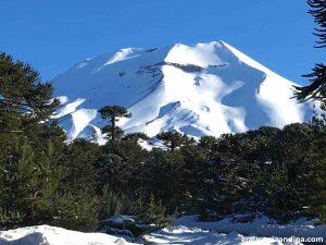Reserva nacional Malalcahuello - Araucanía Andina