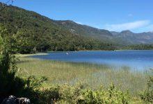 Photo of Parque Nacional Tolhuaca