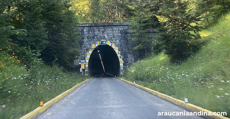 Túnel Las Raíces - Araucanía Andina