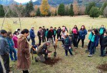Photo of Impulsan proyecto para recuperar emblemática Reserva nacional en la Región de la Araucanía