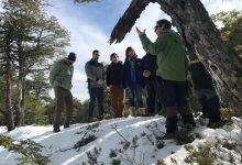Photo of Subsecretaria de Turismo se reúne con empresarios de la Araucanía Andina