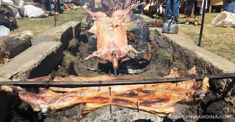 Photo of Fiesta Asado de Chivo y las tradiciones de Lonquimay 2020