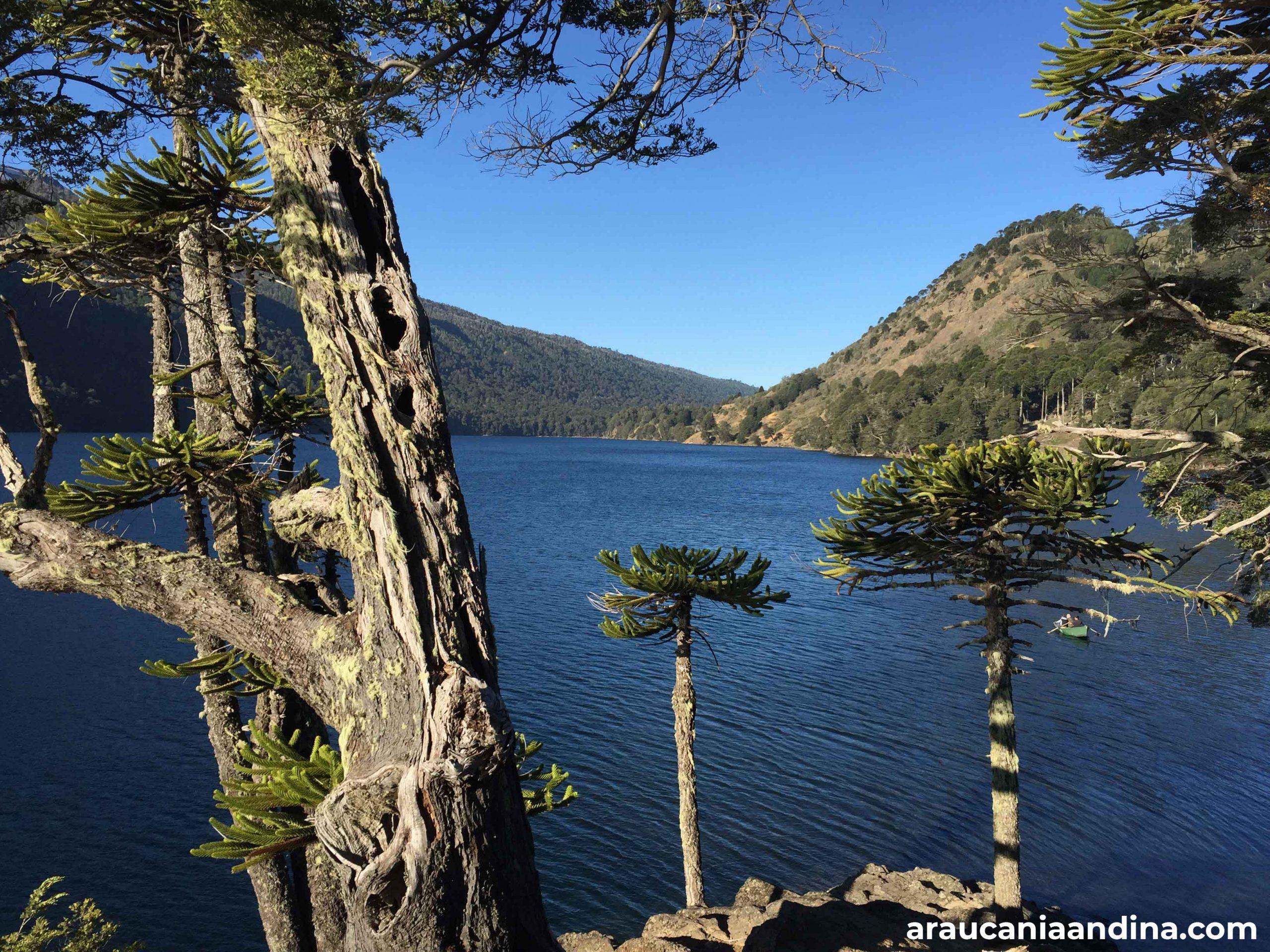 Araucanía Andina - Lago Icalma